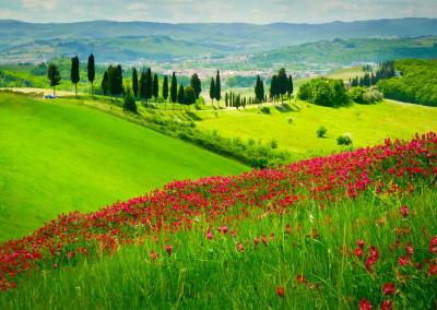 colline-toscane-2